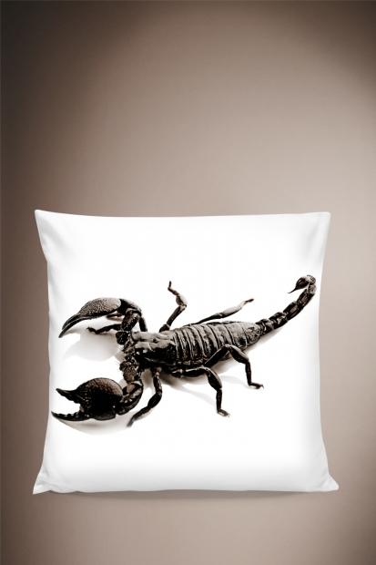 Scorpion Pillow