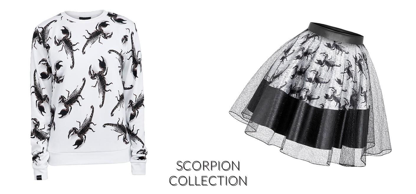 Scorpion collection