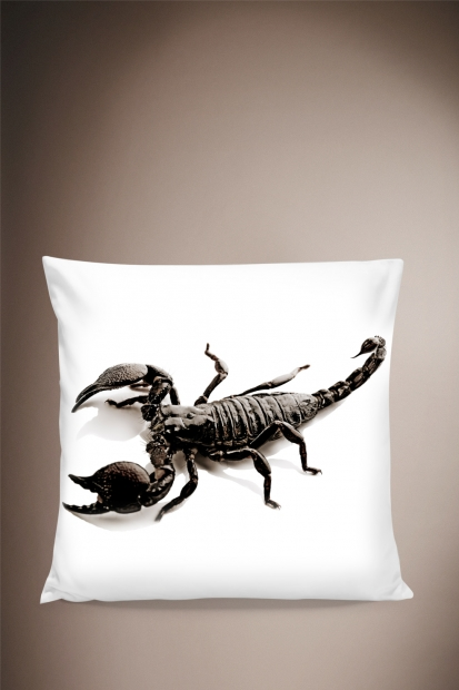 Scorpion Pillow